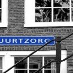 Horizontaal georganiseerde buurtzorg